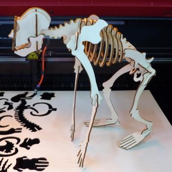szkielet wycięty w sklejce